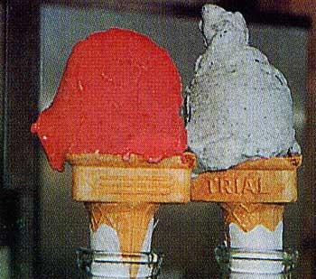 ピカタの森アイス工房のアイス