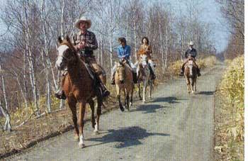 大沼で乗馬体験をしている青いぽすと記者