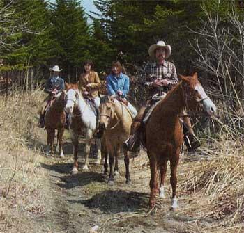 乗馬で散策している人たち