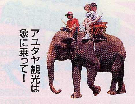 アユタヤ観光は象に乗って