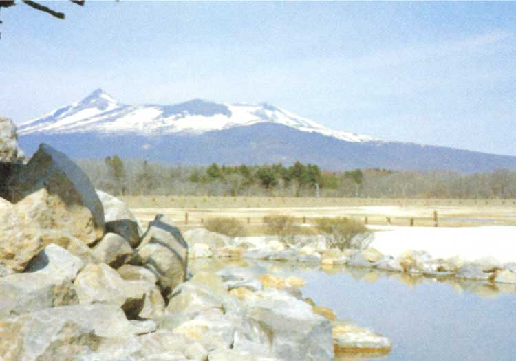 流山温泉の露天風呂