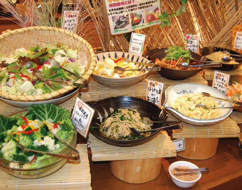 旬菜食健ひな野のバイキング有機野菜サラダコーナー