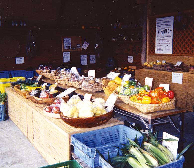 政田農園の直売所