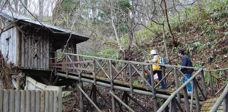 函館山の3合目と4合目の間にある野鳥観察小屋