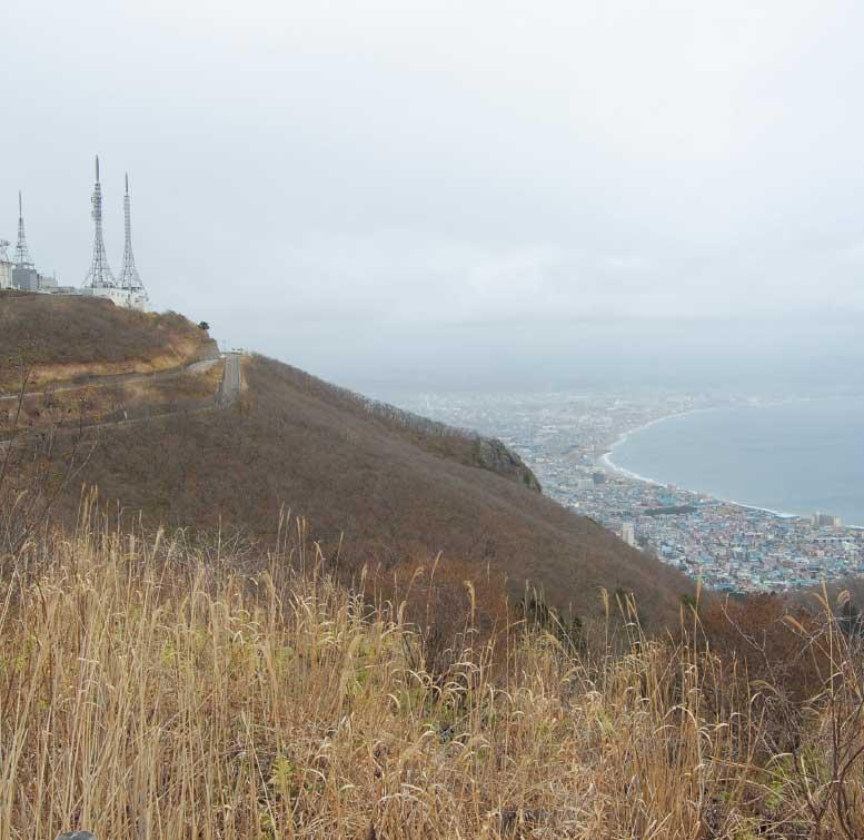 函館山山頂千畳敷側展望台から見た函館の街並み