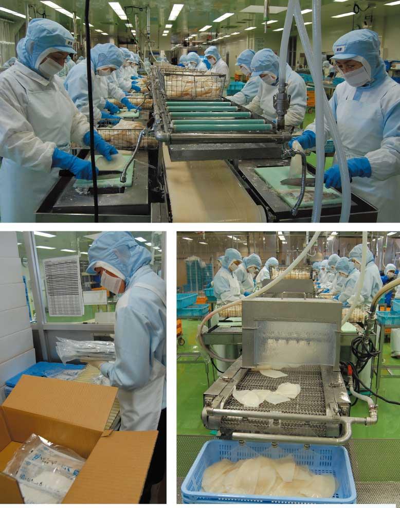 トナミ食品工業株式会社追分工場のイカソーメン製作工程
