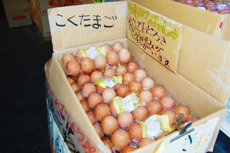 函館中央鶏卵