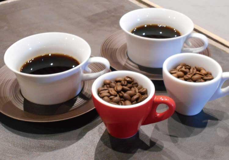 テーラードコーヒー宮前店の飲み比べセット
