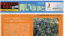 リンゴ・ブドウにプルーンが狩り放題の函館人気果樹園