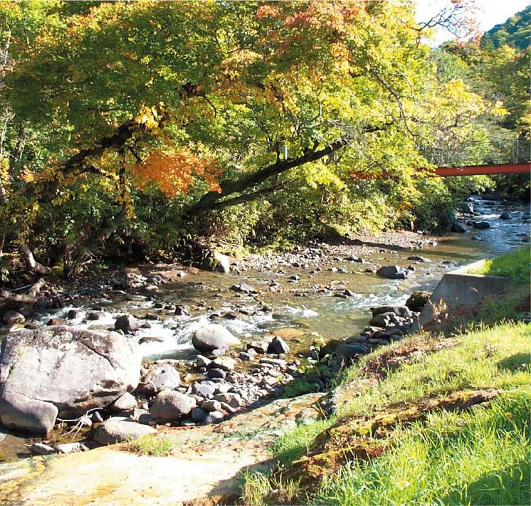 おぼこ荘の露天風呂から見える川沿いの景色