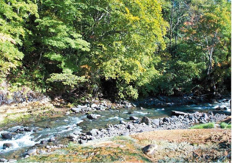 おぼこ荘の脇に流れる川