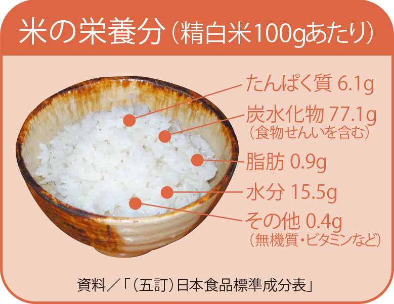 米の栄養成分解説