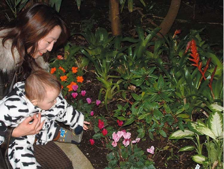 色々な色の花を触っている赤ちゃん