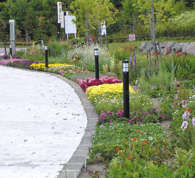 四季の杜公園の花壇