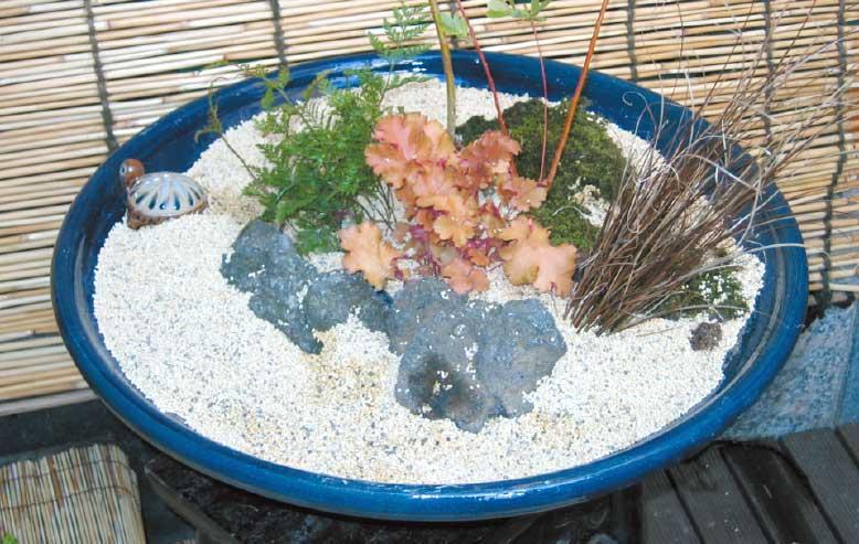 陶器の水盤を鉢植えに見立てた植えられた観葉植物や花