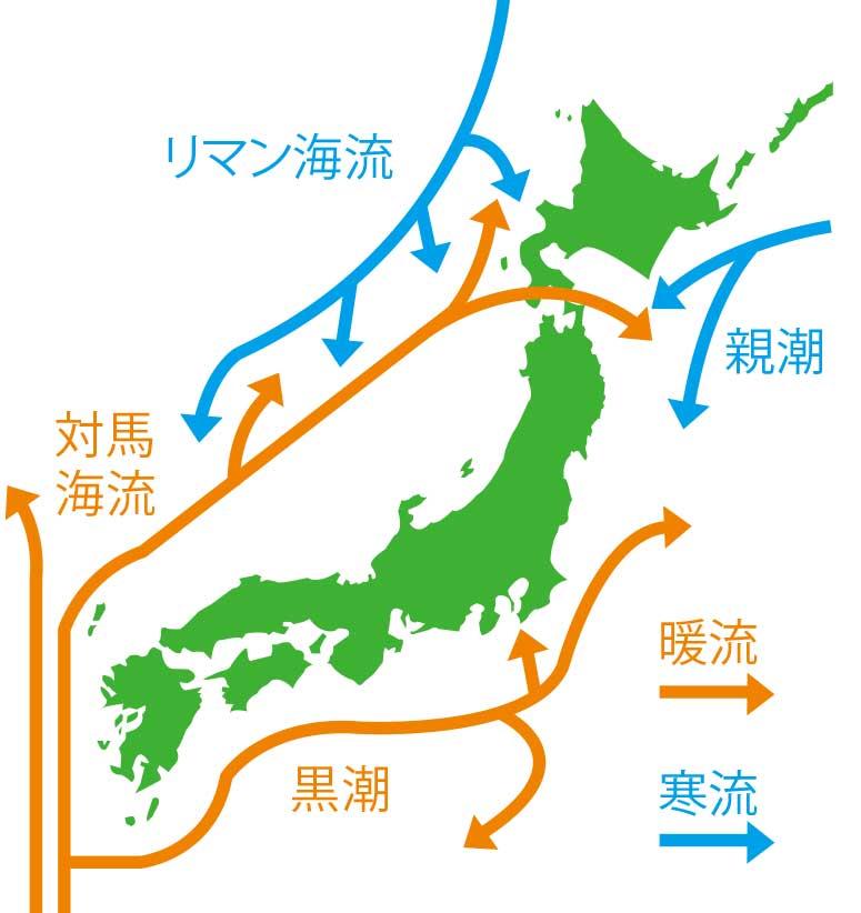 日本近海の海流図