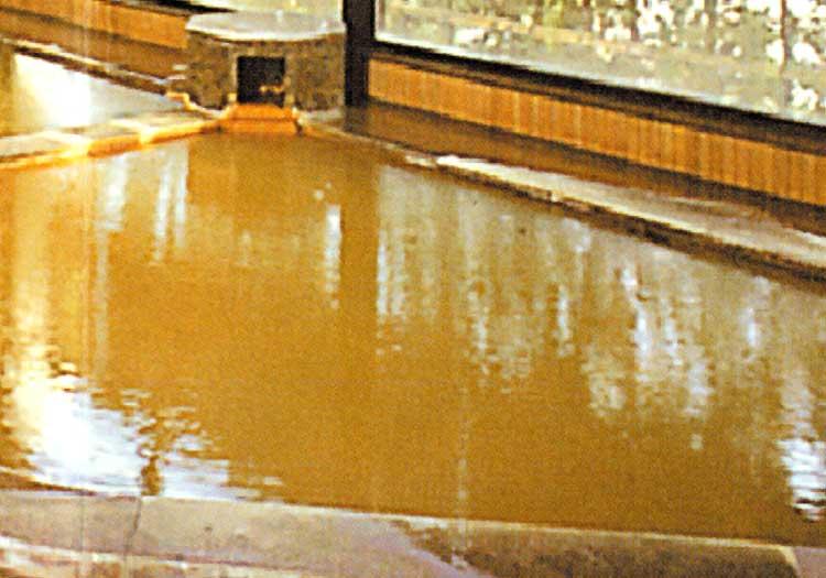ウェルハートピア函館の露天風呂