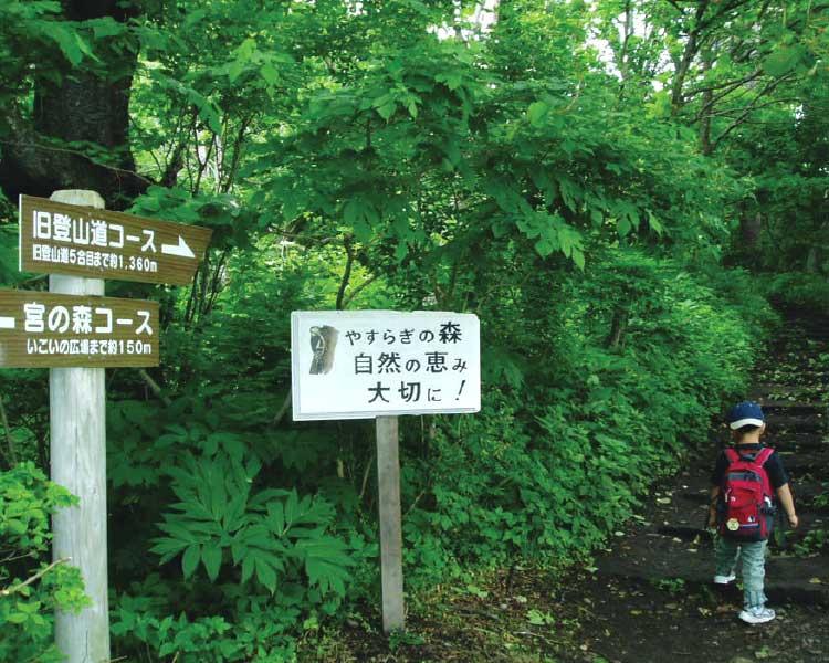 函館山のハイキングコース