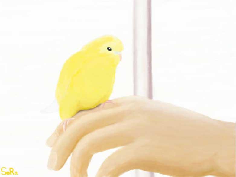 工藤靖也さんが描いた手に乗った小鳥