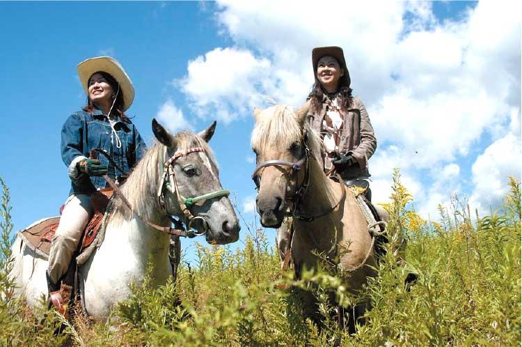 函館どさんこファームの乗馬体験
