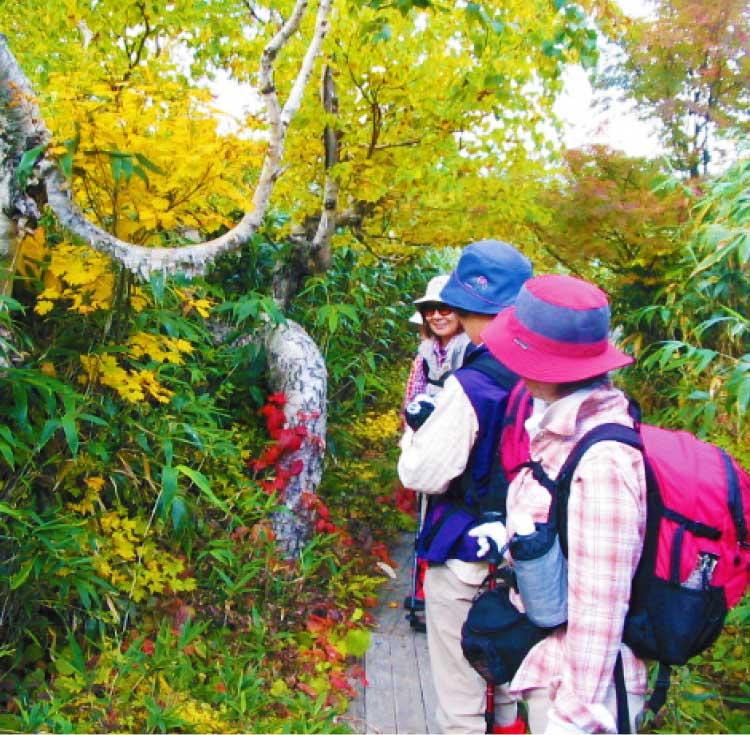 自然倶楽部による散策