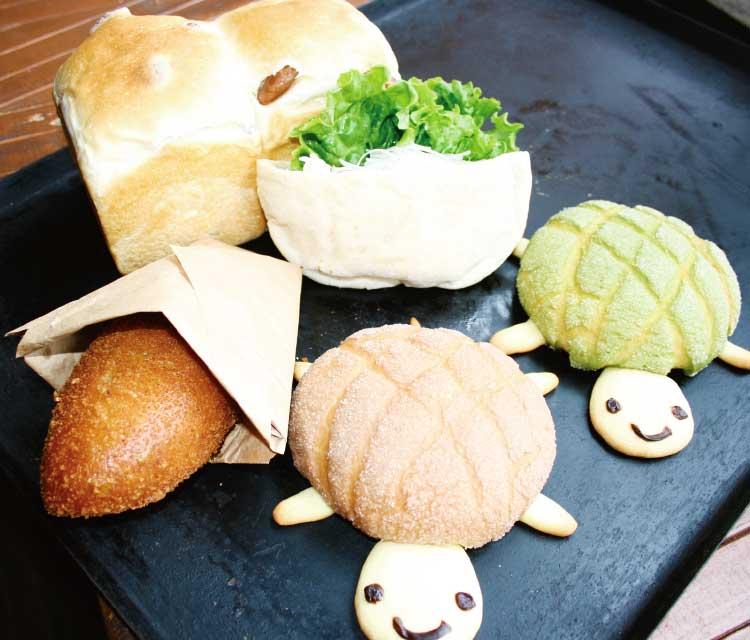 窯蔵のカレーパンと亀さん