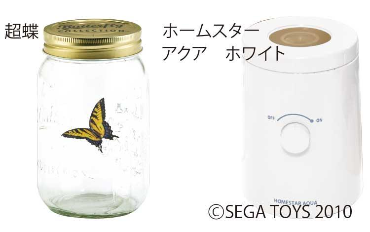 超蝶とホームスターアクアホワイト