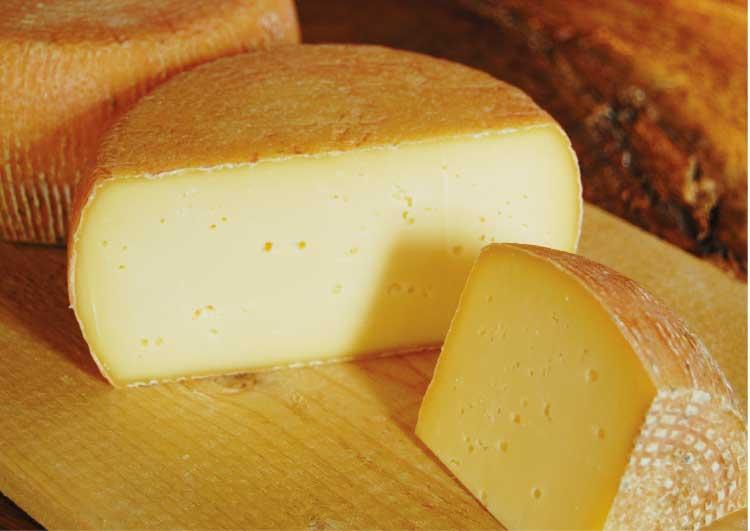 山田農場チーズ工房の牛のセミハードタイプチーズ