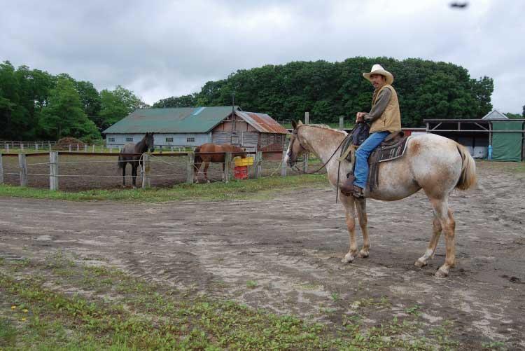 サニーズステーブルの乗馬体験